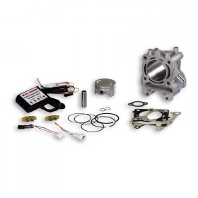kit cylindre Malossi Honda PCX 125