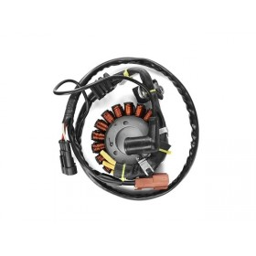 Stator allumage SR Max Nexus MP3 Beverly X10 125 250 300